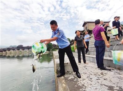 """重庆市黔江区:启动生态修复资金 让15000尾鱼苗""""回家"""""""