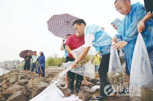 湖南省:300万尾鱼苗放流渌江