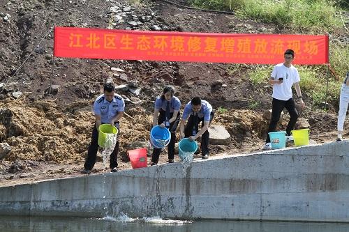 犯罪嫌疑人补偿生态,重庆江北警方联合放生二十万尾鱼苗