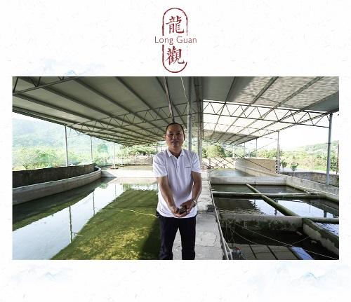 浙江宁波市海曙区:最美溪坑鱼诞生地——龙观