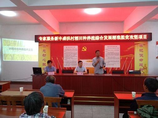 安徽省黄山市:专家指导新丰盛洪村稻田种养殖综合发展
