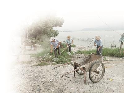 浙江:废弃的牡蛎壳已开始清理 约谈养殖户提高文明意识