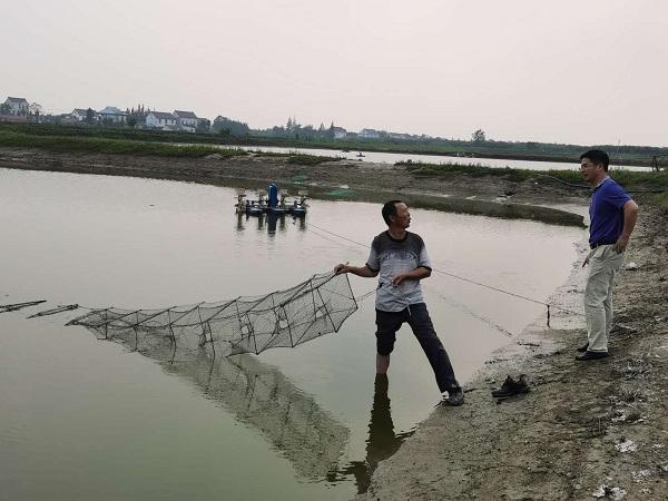 江苏省南通市如东县:河口镇开展南美白对虾养殖污染整治回头看工作督查
