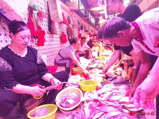 广东省:开渔一个月后 汕尾市部分海鲜价格下降