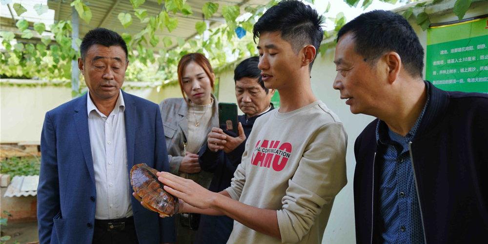 全国龟鳖产业荆楚合作研讨会在湖北孝感临空经济区召开