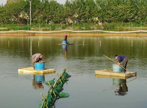 http://www.shuichan.cc/upload/news/news/n2020102715131475.jpg