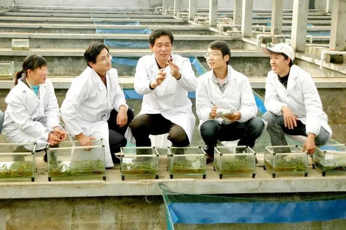 """""""一稻三虾""""模式亩收益达6000元,已推广500多万亩"""