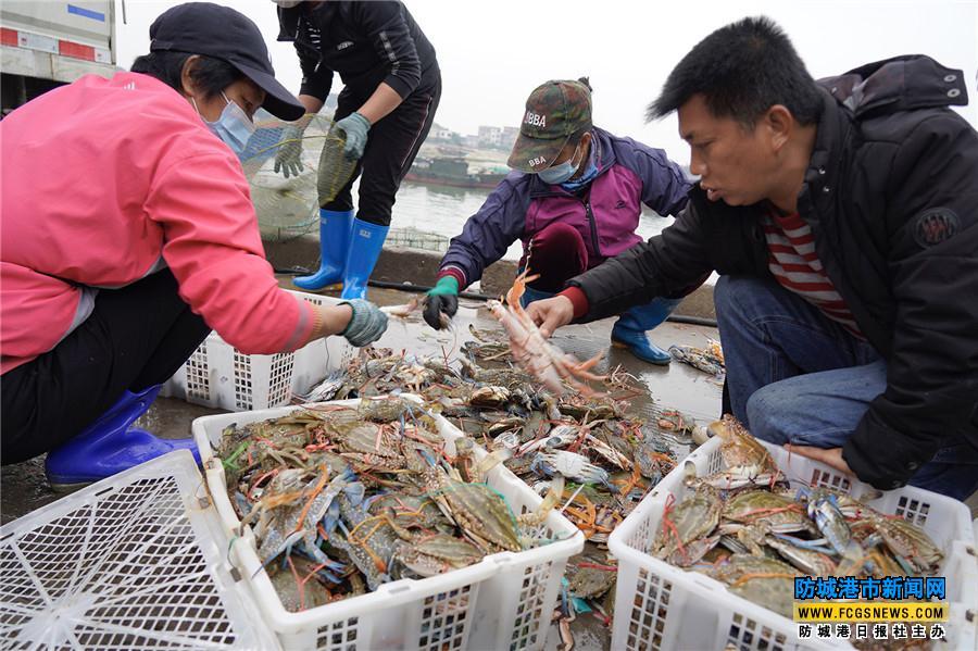http://www.shuichan.cc/upload/news/news/n2021021911070012.jpg