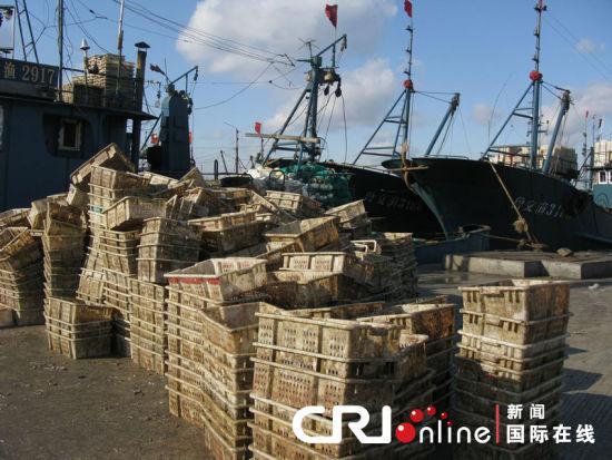 国际在线消息:现在应该是渔民们最忙最旺的时候,但我的船天天出近海,根本打不着鱼。在山东威海市荣成市石岛渔港的码头上,陈老板(化名)坐在自己奥拓车里,对记者叹息道。他手里握着的一份报纸上刊登着醒目的标题《韩国两天抓26艘中国渔船 动用大型军舰和直升机》。咱们的渔船又被抓了!荣成市的码头上、公交车里、菜市场内,市民们无一不在议论着。   渔业资源枯竭、海洋油污、中韩渔业纠纷、外交摩擦我国东部沿海省份在2011年经历了一波接一波的考验,而渔字成为这些靠海为生的城市最敏感的一根神经。