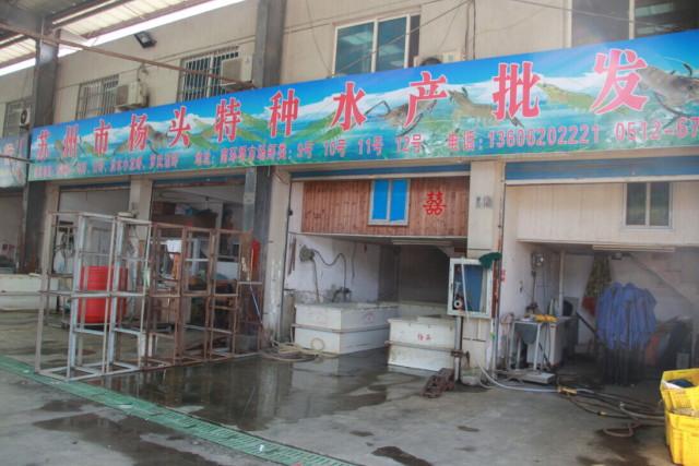 11月6日河虾南美白对虾水法(苏州南环桥价格牛奶油配驼色